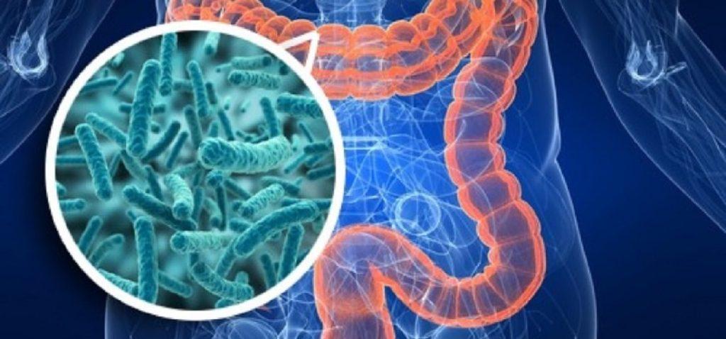 Дисбактериоз у детей: основные симптомы и 7 ступеней лечения